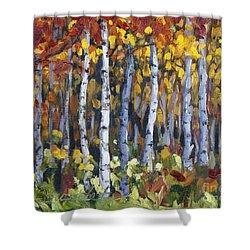 Autumn Trees Shower Curtain