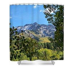 Autumn View Through Aspen Leaves Shower Curtain