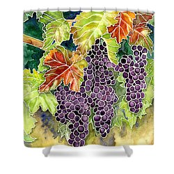 Autumn Vineyard In Its Glory - Batik Style Shower Curtain