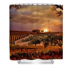 Autumn Vineyard Shower Curtain by Stephanie Laird