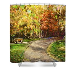 Shower Curtain featuring the painting Autumn Walk by Bernadette Krupa