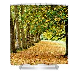 Autumn Walk Shower Curtain