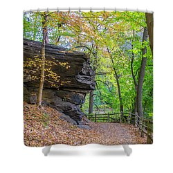 Shower Curtain featuring the photograph Autumn Walk In Fairmount Park -  Licoln Drive by Bill Cannon