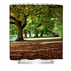 Autumn Walk In The Park Shower Curtain