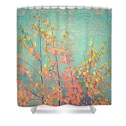 Shower Curtain featuring the photograph Autumn Wall by Ari Salmela