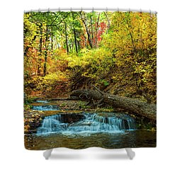 Autumn Waterfall Shower Curtain by Anthony Citro