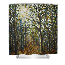 Autumn Wood Shower Curtain