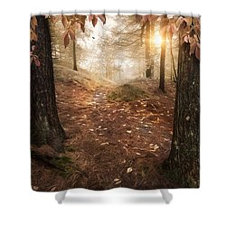 Shower Curtain featuring the photograph Autumn Woodland by Robin-Lee Vieira
