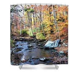 Autumn Woodlands Shower Curtain