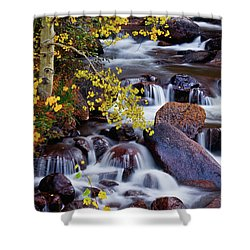 Shower Curtain featuring the photograph Autumn Zen by John De Bord