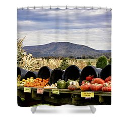 Autumnal Abundance In The Blue Ridge Mountains - Virginia Shower Curtain