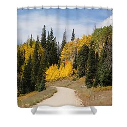 Autumnal Forest-dixie National Forest Utah Shower Curtain