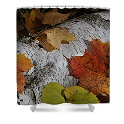 Autumnal Melange Shower Curtain