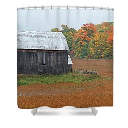 Shower Curtain featuring the photograph Autumnal.. by Nina Stavlund