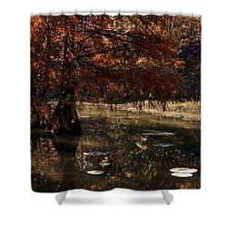 Shower Curtain featuring the photograph Autumnal Solace At Lake Murray by Tamyra Ayles