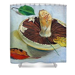Autumnal Still Life, Shower Curtain by Tilly Willis