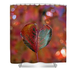 Shower Curtain featuring the photograph Autumn's Bold Heart by Debra Thompson