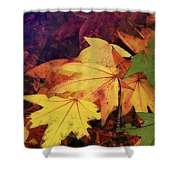 Autumns Colors Shower Curtain by Robert Ball