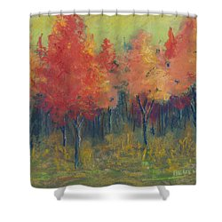 Autumn's Glow Shower Curtain by Lee Beuther