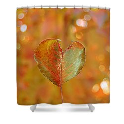 Autumn's Golden Splendor Shower Curtain