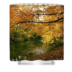 Shower Curtain featuring the photograph Autumn's Golden Tones by Jessica Jenney