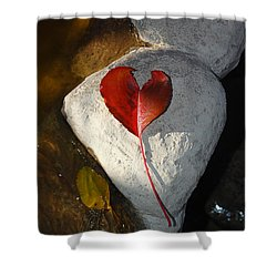 Autumn's Love And Serenity Shower Curtain by Debra Thompson