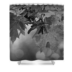 Autumn's Mystery Shower Curtain