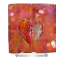 Autumn's Orange Elegance Shower Curtain