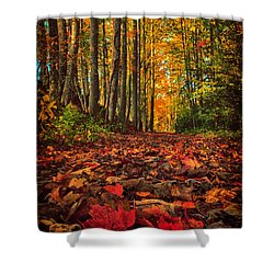 Autumn's Walkway Shower Curtain