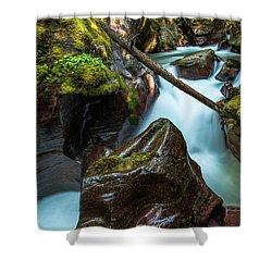 Avalanche Creek Shower Curtain