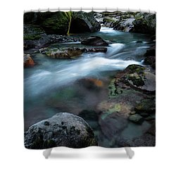 Avalanche Creek Through The Forest Shower Curtain