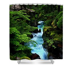 Avalanche Creek Waterfalls Shower Curtain