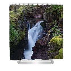 Shower Curtain featuring the photograph Avalanche Gorge 3 by Gary Lengyel