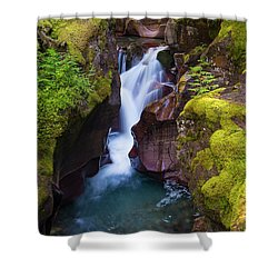 Shower Curtain featuring the photograph Avalanche Gorge 4 by Gary Lengyel