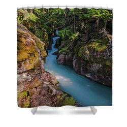 Shower Curtain featuring the photograph Avalanche Gorge 5 by Gary Lengyel