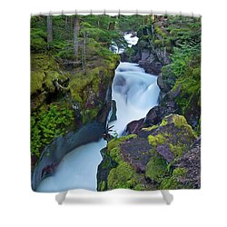 Shower Curtain featuring the photograph Avalanche Gorge 7 by Gary Lengyel