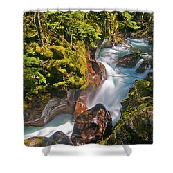 Shower Curtain featuring the photograph Avalanche Gorge by Gary Lengyel