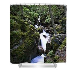 Avalanche Gorge Glacier National Park Shower Curtain by Rich Franco