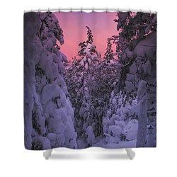 Avalon Sunset Shower Curtain