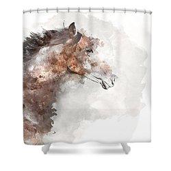 Avante Art Shower Curtain
