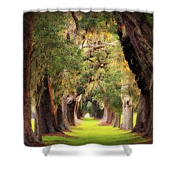 Avenue Of Oaks Sea Island Golf Club St Simons Island Georgia Art Shower Curtain by Reid Callaway