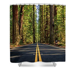 Avenue Of The Giants Shower Curtain by James Eddy