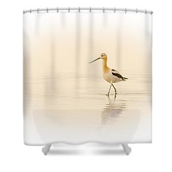 Shower Curtain featuring the photograph Avocet Walk by Yeates Photography