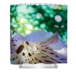 Awaken Shower Curtain by Bobby Villapando