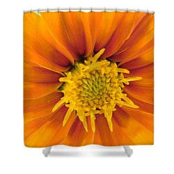Awesome Blossom Shower Curtain