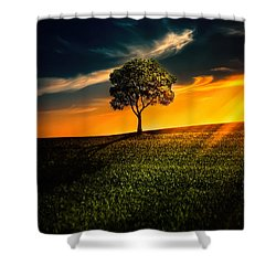 Awesome Solitude II Shower Curtain