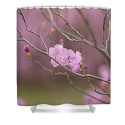 azalea III Shower Curtain by Hyuntae Kim
