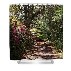Azalea Path  Shower Curtain