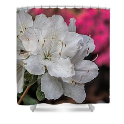 Shower Curtain featuring the photograph Azaleas In Turtle Creek by Diana Mary Sharpton