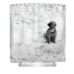 Shower Curtain featuring the photograph Azores In Infrared 1 by Bruno Rosa